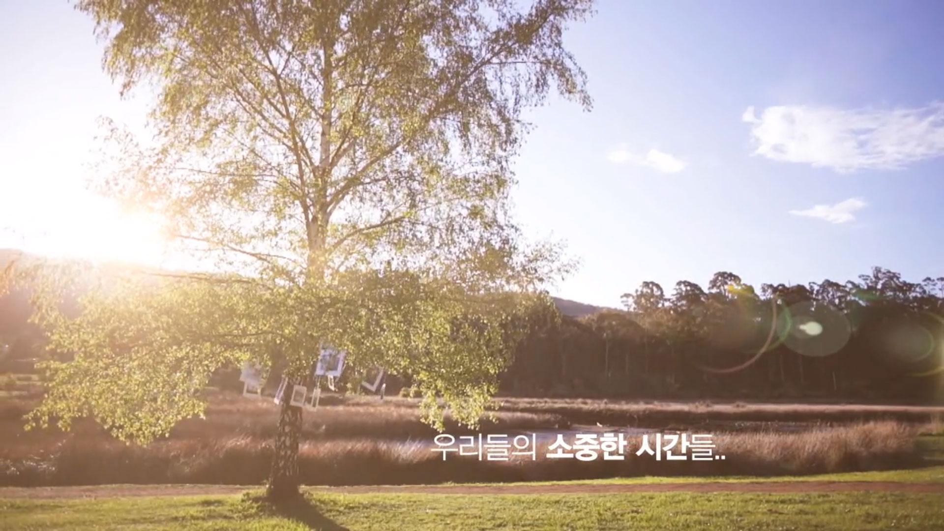 아모르(성장+ 데이트 +리허설사진)